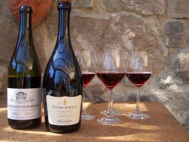 Alles, was Sie über Wein wissen müssen …
